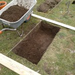 Trenching part 2: removal of first spit of soil