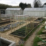 Main beds in good condition; those not in use are covered with weed suppressing membrane