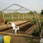 Assembly of the polytunnel framework around the prepared beds