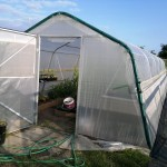 Completed polytunnel