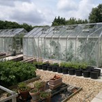 Main glasshouses