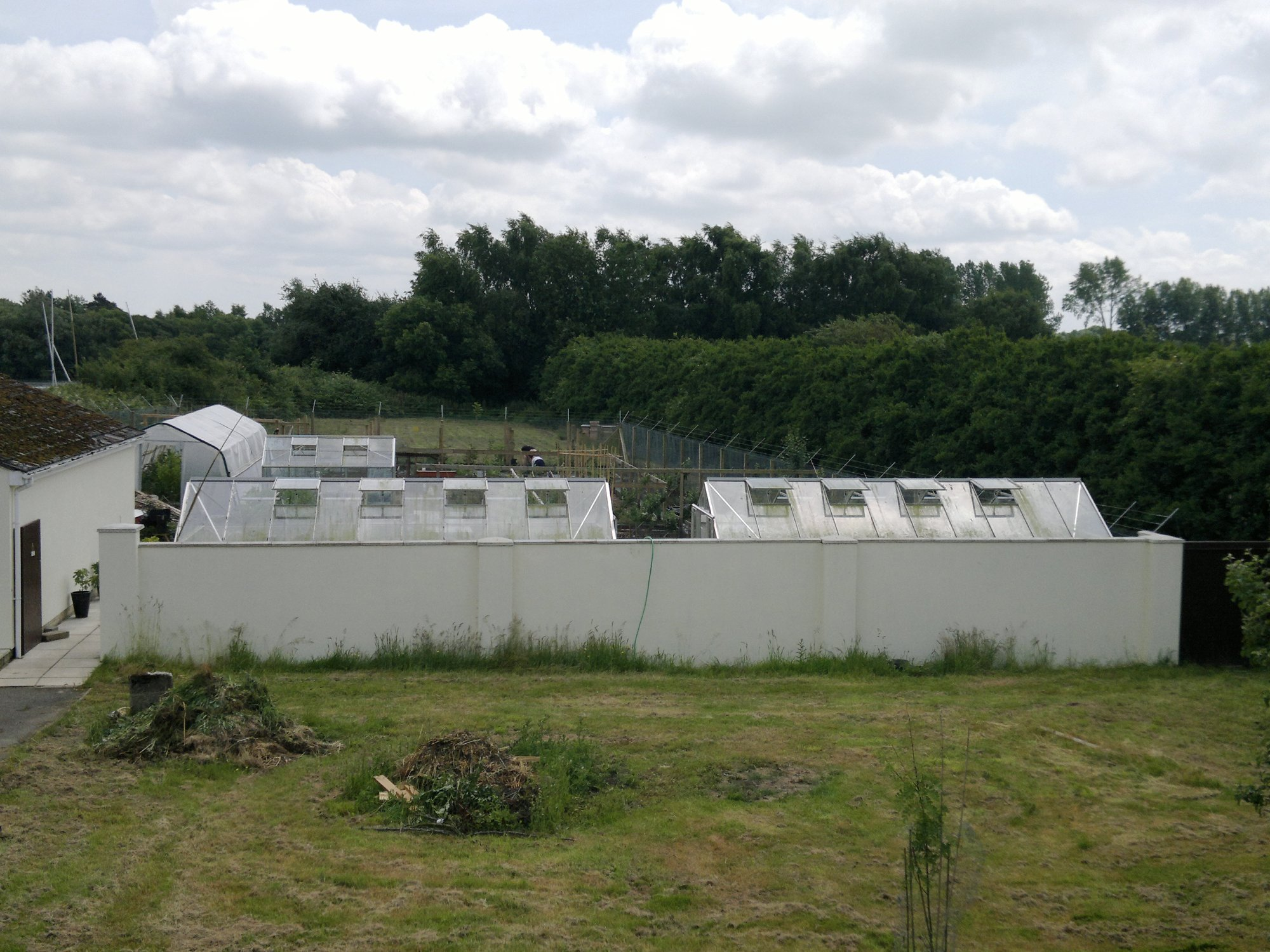 Elevated view of the kitchen garden