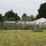 The kitchen garden seen from the orchard
