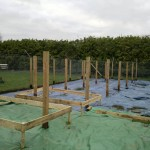The beginnings of the fruit cage, covered with plastic to keep the weeds under control