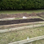 Second bed finished, ready for planting