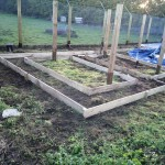 First beds in place