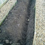 Trench dug ready for the trees
