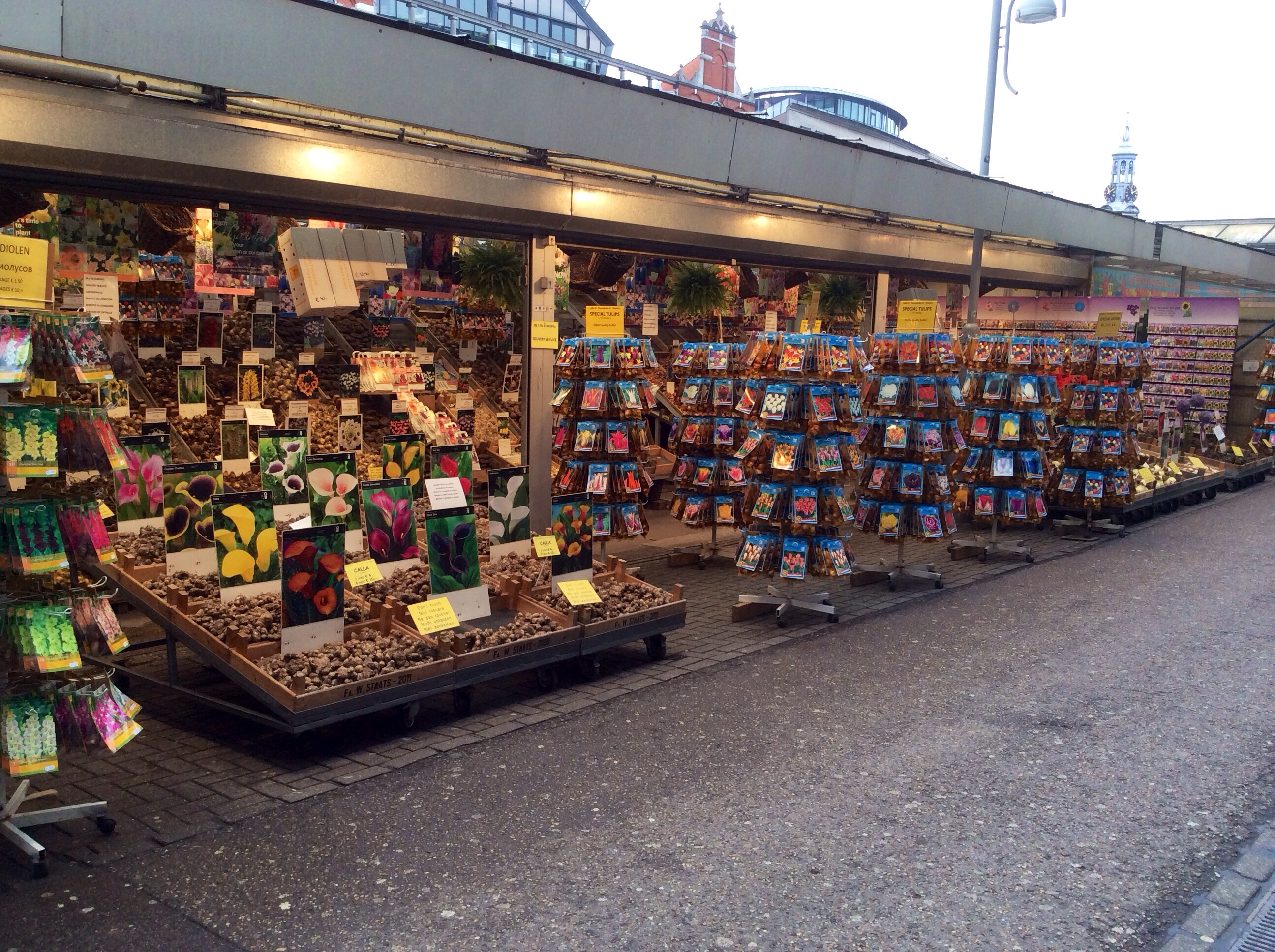 Stores packed with bulbs, mostly tulips but also other sorts