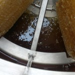 Honey gathering in the channel at the base of the extractor