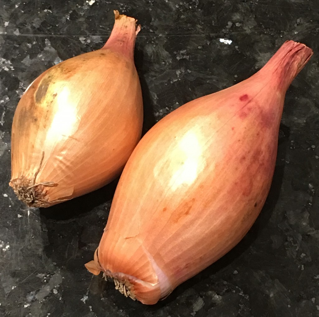 The echalion shallot - it's nice but shallot it's not